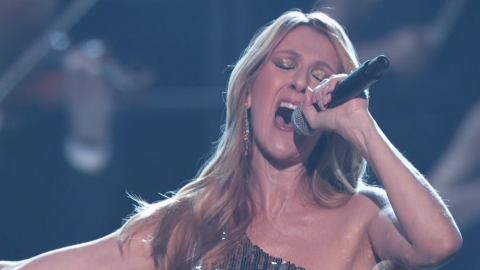 Celine Dion Made Everyone Cry at the BBMAs Last Night   StyleCaster