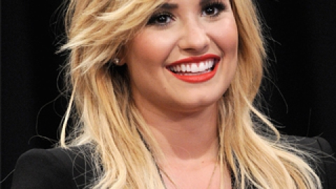 Demi Lovato's Facialist Swears by This Home Remedy to Prevent Acne   StyleCaster