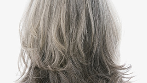 How to Deal When You Find Your First Gray Hair   StyleCaster