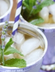 10 Modern Mint Julep Recipes You'll Have an Excuse to Drink Today