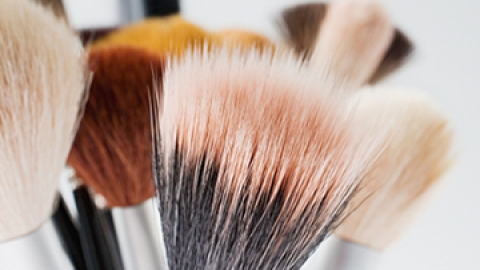 The Difference Between Natural and Synthetic Brushes   StyleCaster