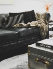 The Beginner's Guide to Buying the Perfect Couch
