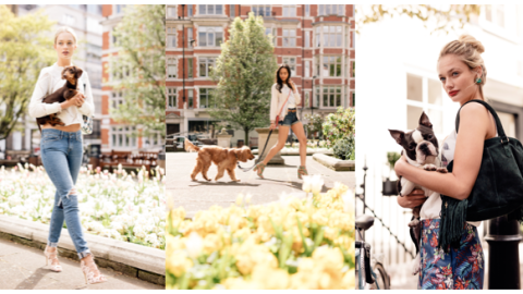 The Whole Lyst-Is-Selling-Live-Dogs Thing Is Probably, Definitely a PR Stunt  | StyleCaster