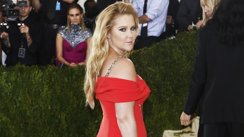 Yes, Girl: Amy Schumer Is on the Cover of 'Vogue' | StyleCaster