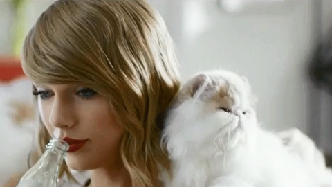 Someone Please Tell Taylor Swift That There's Now Wine for Cats | StyleCaster
