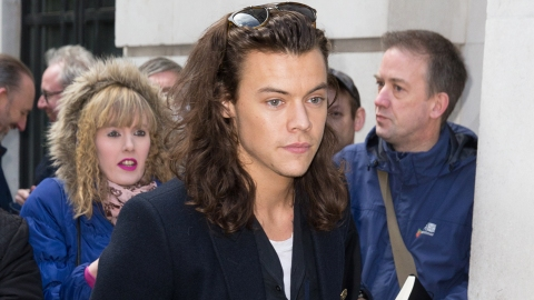 Is Harry Styles About to Play the Role of a Lifetime? | StyleCaster