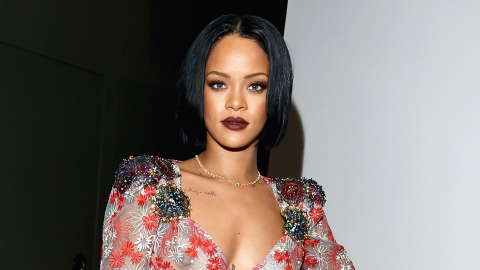 Now You Can Wear a Sweatshirt with Naked Rihanna on It | StyleCaster
