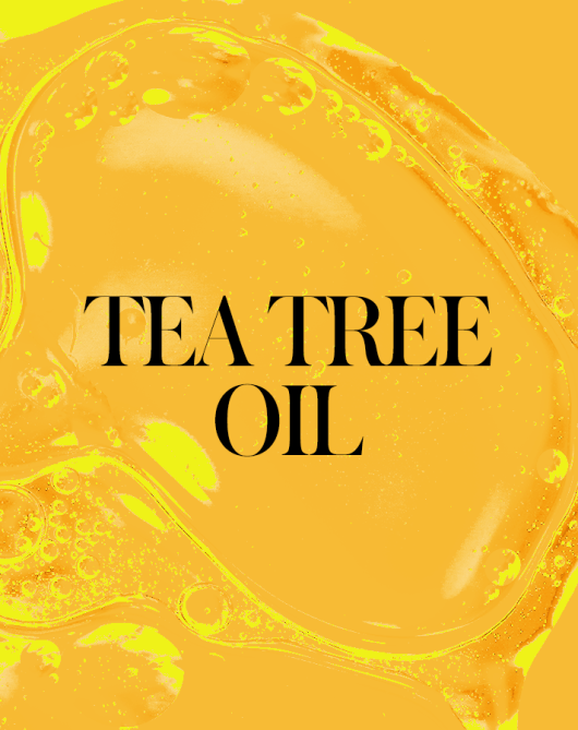 tea tree oil 1 Your Everything Guide to Fixing Your Skin with Face Oils