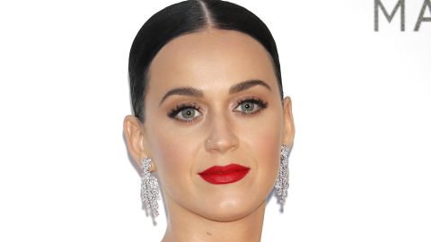 #Normal: Katy Perry Votes Naked, Gets Arrested, Laughs It Off | StyleCaster