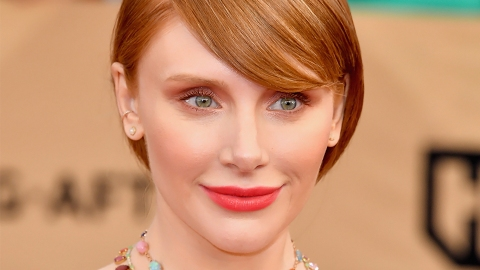 You *Need* to See Bryce Dallas Howard's SAG Awards Updo From Behind | StyleCaster
