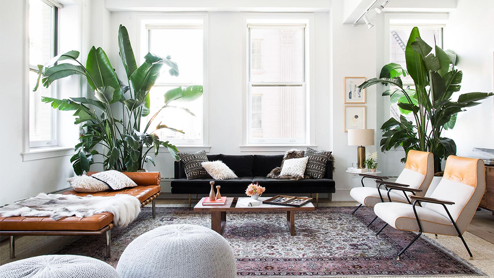 Adult Home Decor Under $50