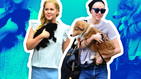 10 Celebrities Who Posed Topless with Their Pets | StyleCaster