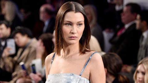 Bella Hadid Shuts Down Troll's Plastic Surgery Accusations | StyleCaster