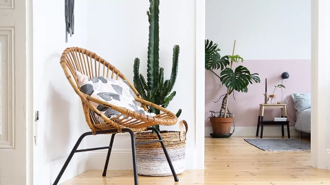 The Chic Decor Trend That Will Cost You Less Than $50 | StyleCaster