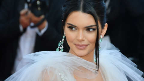 Is Kendall Jenner's Blazer Dress a New Take on the Shirtdress?   StyleCaster