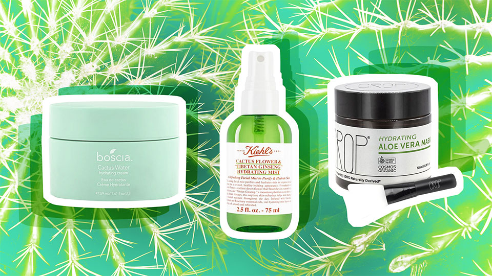 The Best Cactus Products for Skin That's Drier than the Sahara Desert