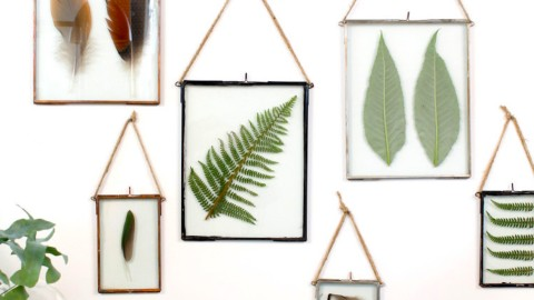 Forget Art—Fill Your Home with Framed Plants Instead | StyleCaster