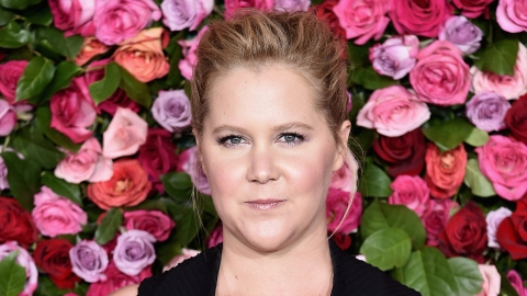 Amy Schumer Proves Her Career Isn't 'Stalled' Because She's Pregnant | StyleCaster