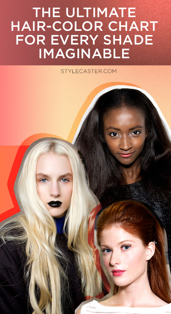 STYLECASTER | The Super-Simple Hair-Color Chart for Every Shade Imaginable