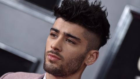 Zayn Malik Just Responded to Louis Tomlinson's Shade Over Their One Direction Drama   StyleCaster