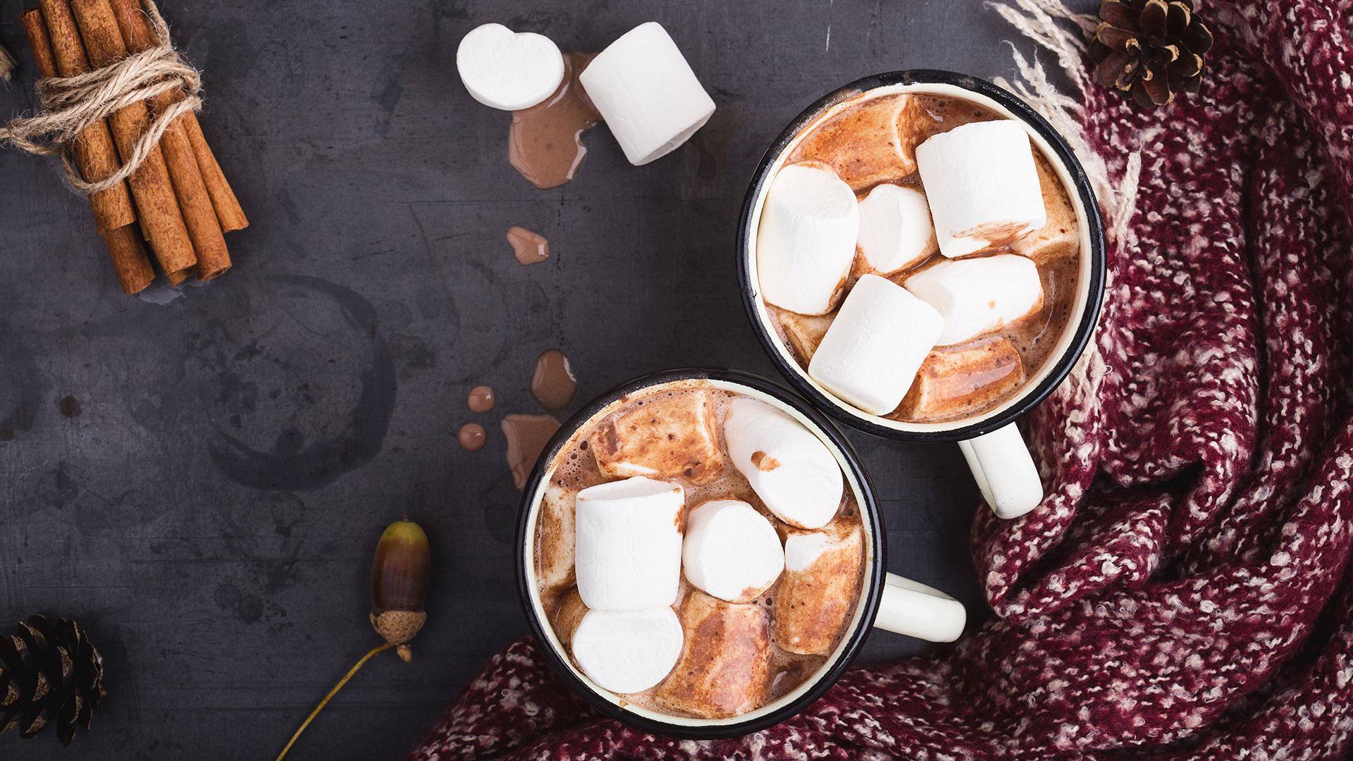 A Complete Ranking of the Best Store-Bought Hot Cocoa