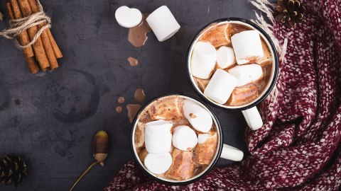 A Complete Ranking of the Best Store-Bought Hot Cocoa | StyleCaster