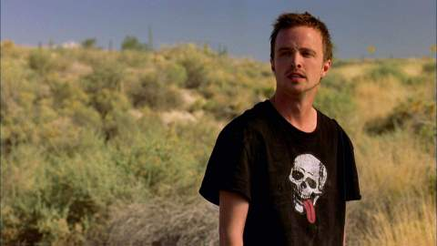 You'll Be the One Who Knocks After Watching These Shows Like 'Breaking Bad' | StyleCaster