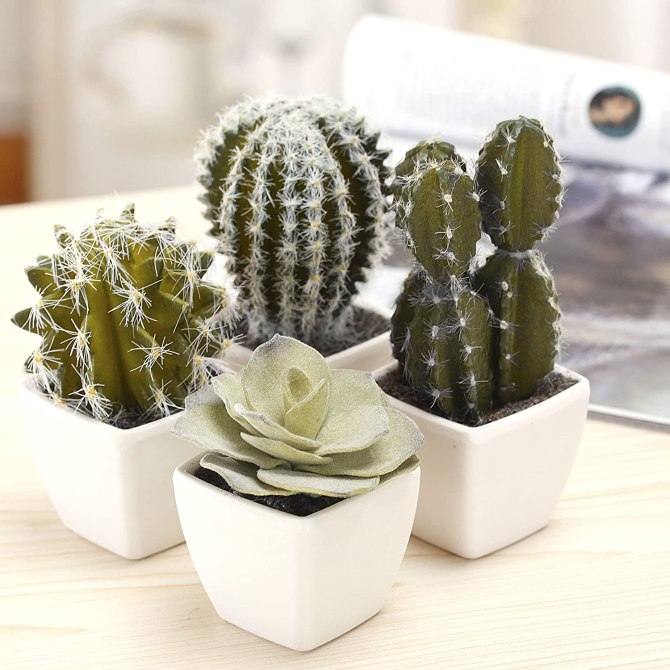 STYLECASTER | mini cacti | boho bedroom decor