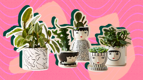 27 Planters So Cute, They're Actually Worthy of Your Plant Babies   StyleCaster