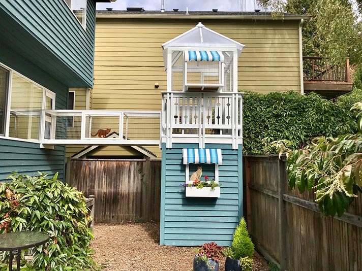 catio1 A Beginner's Guide to the Catio—Cat Patio—Trend