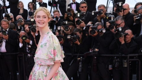 Elle Fanning Wore the Braid Version of a Flower Crown at Cannes | StyleCaster