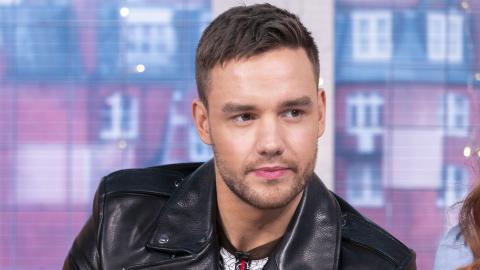 Liam Payne Had a Surprising Response to Harry Styles' Shade at Zayn Malik   StyleCaster