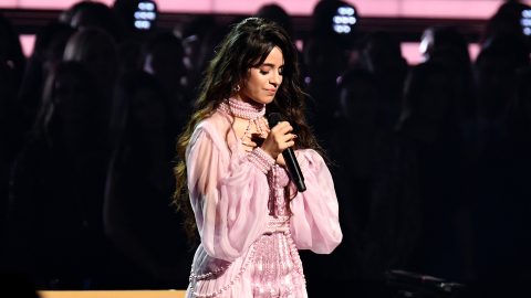 Camila Cabello Sang to a 'Man She Loves' at the Grammys & No, It's Not Shawn Mendes | StyleCaster