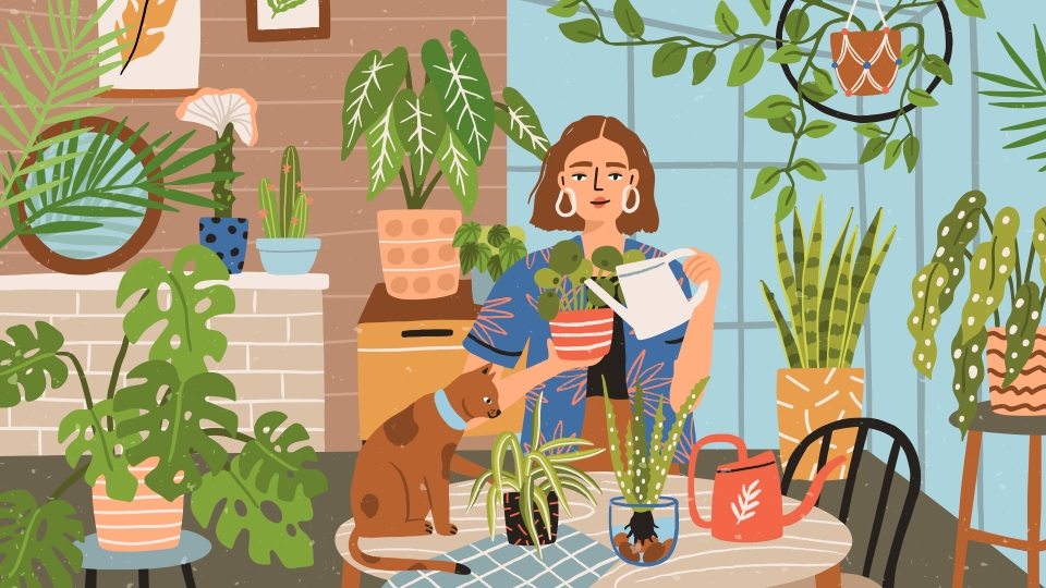 Hot Tips From Plant People: How To Ensure Your Leafy Friends Thrive | StyleCaster