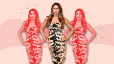 Sofia Vergara, Please Don't Take The 'America's Got Talent' Job | StyleCaster