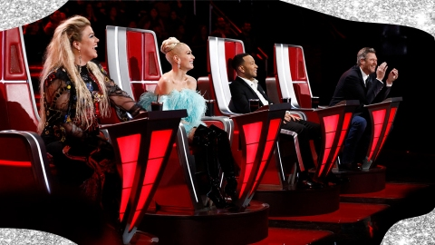 Famous Singers You Didn't Know Were Almost Coaches on 'The Voice'   StyleCaster