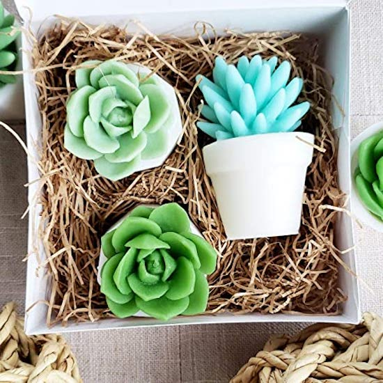 STYLECASTER | Cheap Gifts for Friends | succulent soaps