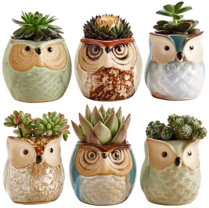 Sun-E Owl Pots