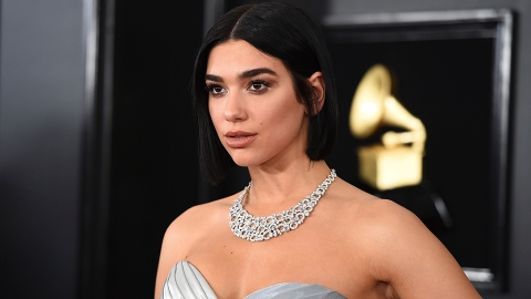 Dua Lipa's Net Worth Is Massive—Here's How the Grammys Can Make It Even Bigger | StyleCaster