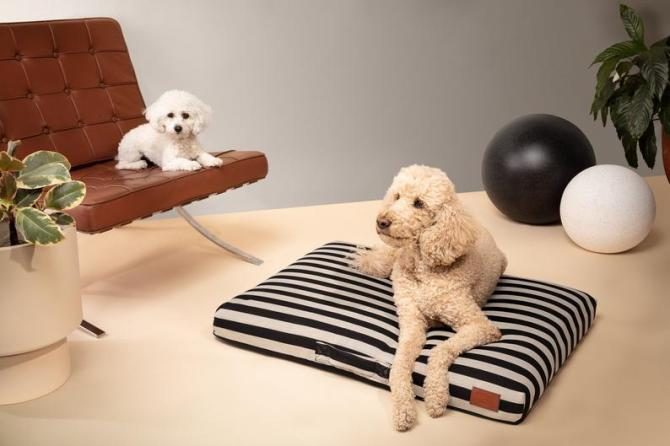 STYLECASTER | Altuzarra x Etsy Home Decor Collection | dog bed