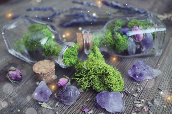 STYLECASTER |  I posti migliori per acquistare cristalli |  vaso di cristallo terrario