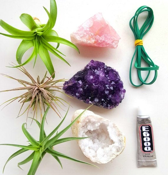 STYLECASTER |  I posti migliori per acquistare cristalli |  kit di piante d'aria di cristallo