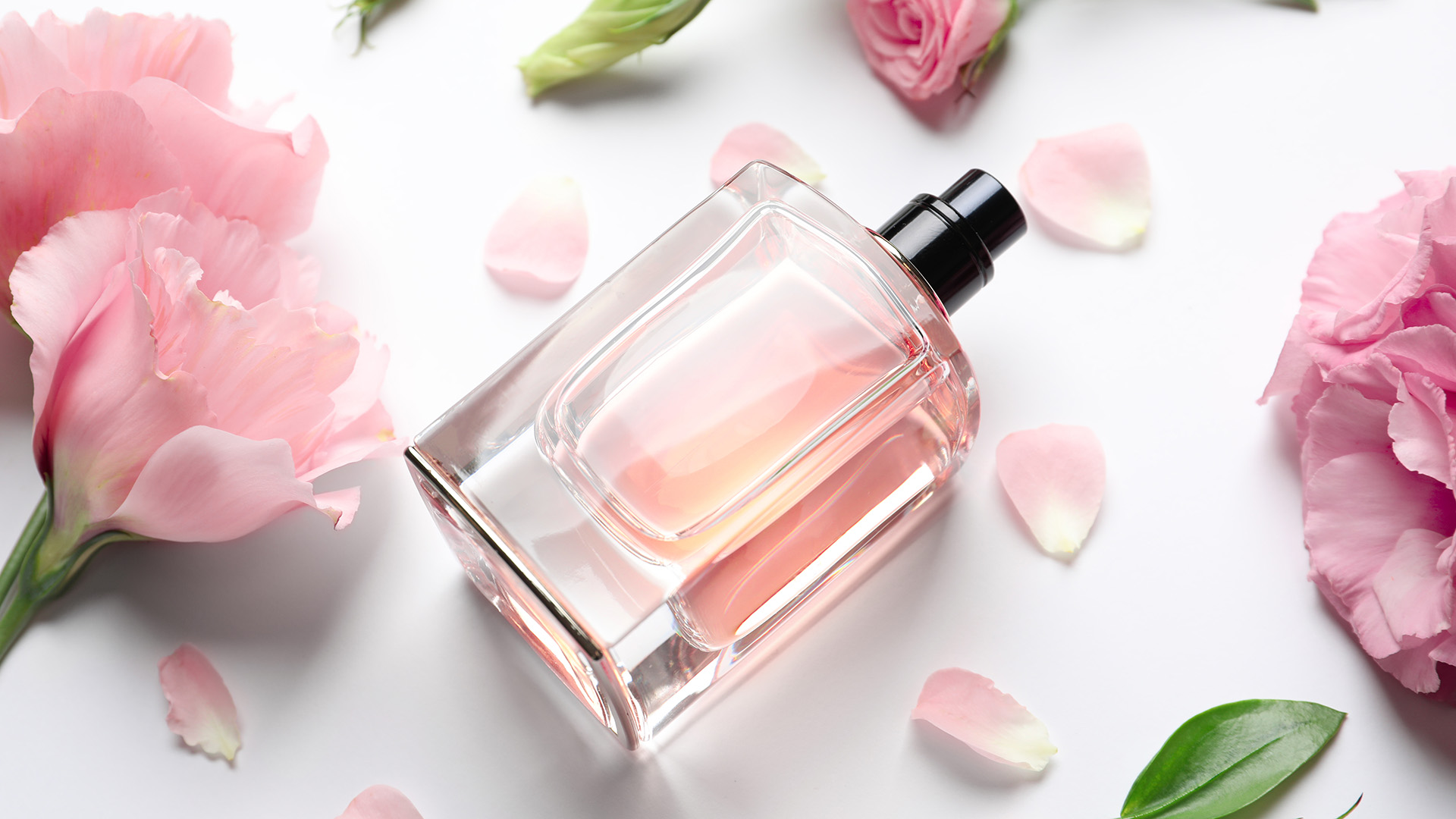 These Fragrances Prove Florals Are Groundbreaking —No Matter the Season