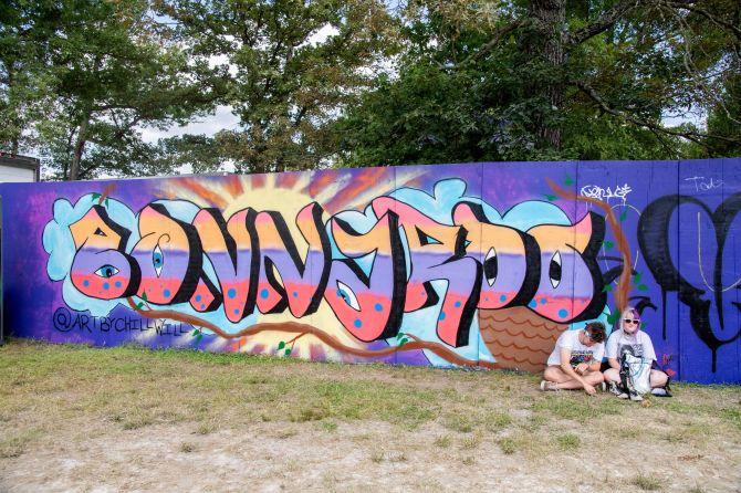 STYLECASTER   Festival Zoom Backgrounds   bonnaroo mural