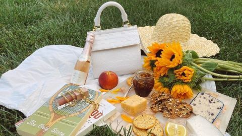 I Had A Modern Picnic With This Brand's Super Chic Handbag-Style Lunchbox | StyleCaster