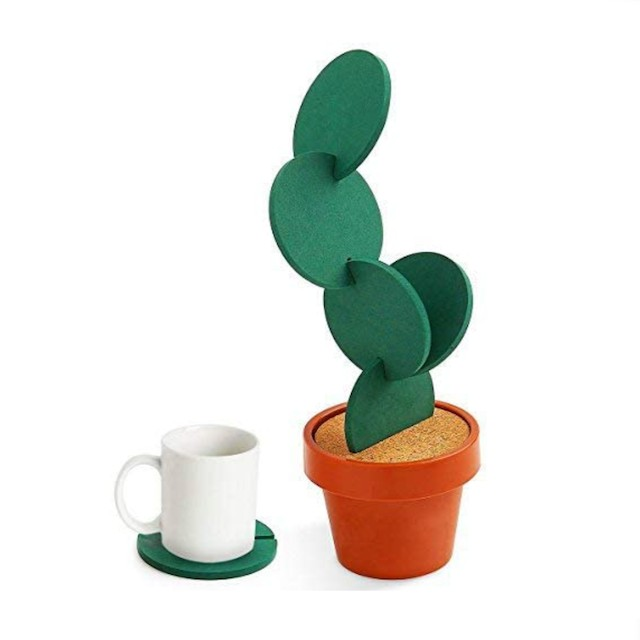 DIY Cactus Coaster Set