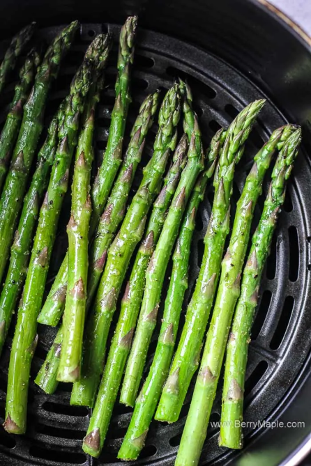 STYLECASTER | Healthy Air Fryer Recipes