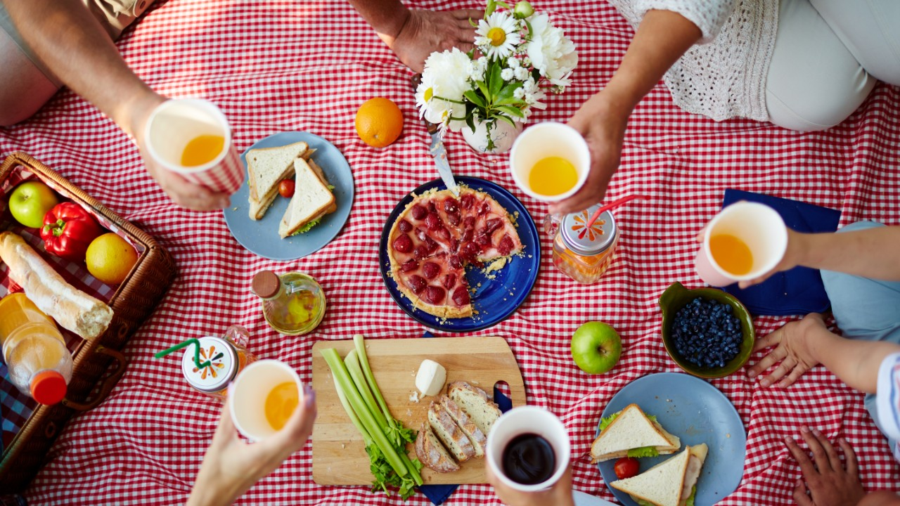 Waterproof Picnic Blankets That'll Keep You Dry & Comfy