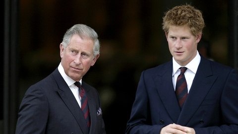 Prince Charles Called Rumored Feud With Prince Harry 'Complete Nonsense,' Source Claims | StyleCaster