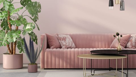 Stylish Velvet Sofas Are the Luxe Statement Piece Your Apartment is Missing | StyleCaster